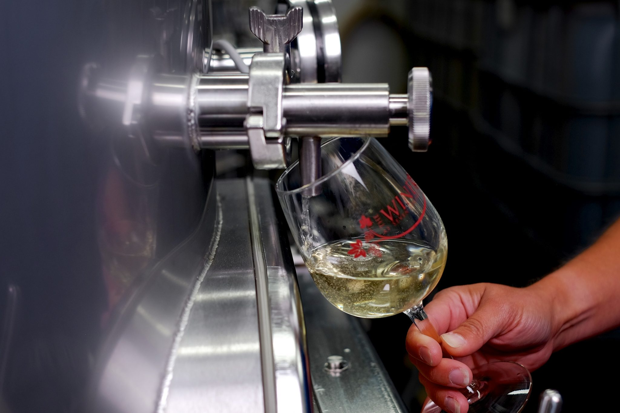 Learn More about The Winery at Seven Springs and Our Local Wine Selection