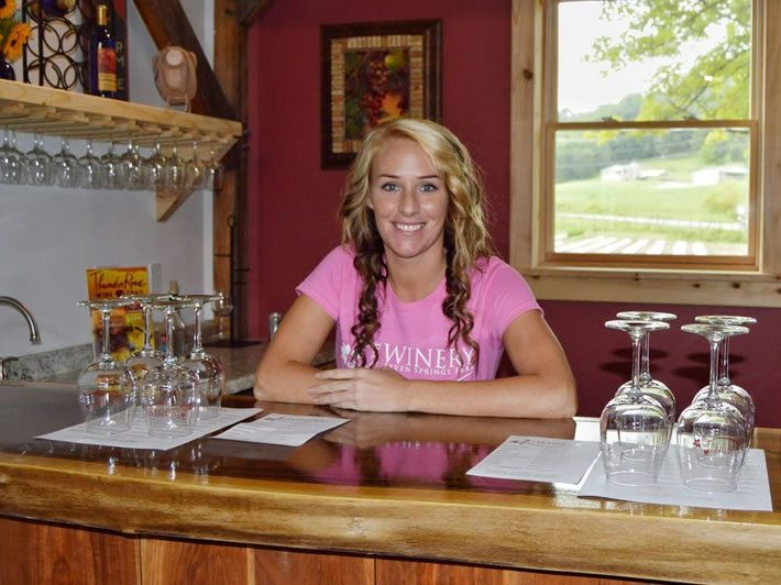 Visit our Tasting Room and Try Our Tennessee Wines